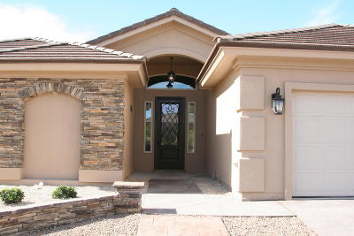 El Paso Single Family Home For Sale: 958 Tramonto Vista Court
