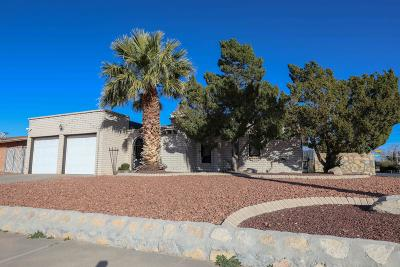 El Paso Single Family Home For Sale: 1800 Larry Hinson Drive