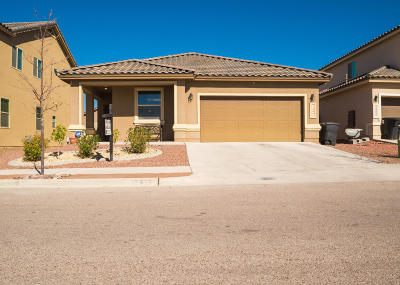 Horizon City Single Family Home For Sale: 12335 Joe Gomez Court