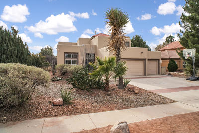 El Paso Single Family Home For Sale: 554 Rosinante Road