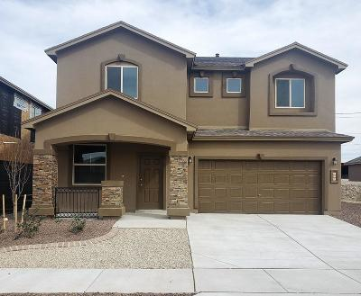 Horizon City Single Family Home For Sale: 328 Canyon Vista Drive