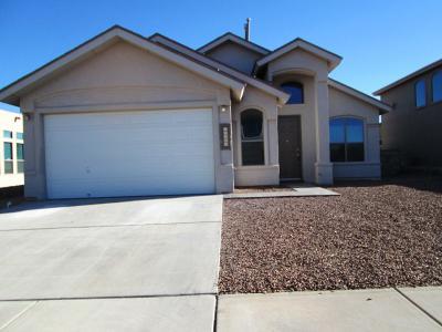 Horizon City Single Family Home For Sale: 14060 Highweed Drive