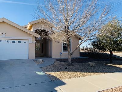 Horizon City Single Family Home For Sale: 14700 Cactus Crossing Drive
