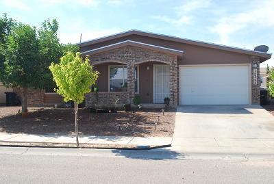Horizon City Single Family Home For Sale: 14304 Desierto Bueno Avenue