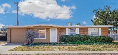 Single Family Home For Sale: 4617 Skylark Way
