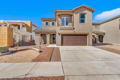 Horizon City Single Family Home For Sale: 545 Lanner Street