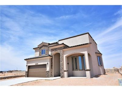 El Paso Single Family Home For Sale: 12418 Mine That Bird Drive