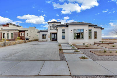 El Paso Single Family Home For Sale: 1802 Sidesaddle