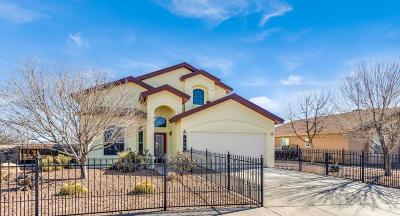 Horizon City Single Family Home For Sale: 540 Cactus Crosing Drive