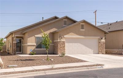 El Paso Single Family Home For Sale: 7609 Red Cedar Drive