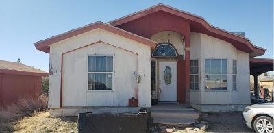 Horizon City Single Family Home For Sale: 513 Agua De Flor