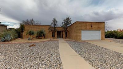 El Paso Single Family Home For Sale: 5804 Kingsfield Avenue