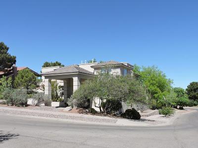 El Paso Single Family Home For Sale: 6598 Eagle Ridge Drive
