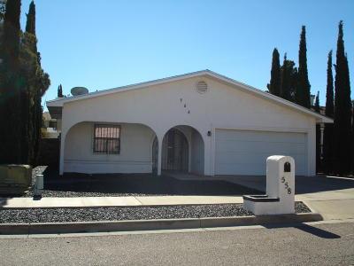 El Paso Single Family Home For Sale: 558 Dorsey Drive