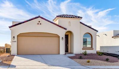 Horizon City Single Family Home For Sale: 1069 Shields Street