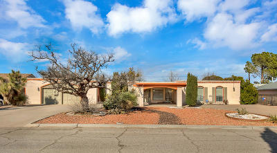 Single Family Home For Sale: 9513 Desert Hills Lane