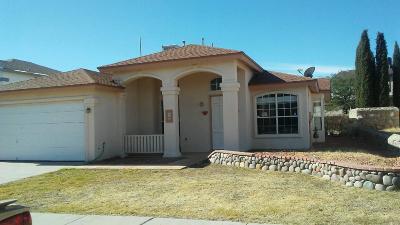 Horizon City Rental For Rent: 233 Lago Claro Drive