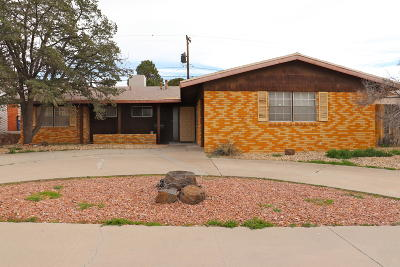 Single Family Home For Sale: 212 Stratus Road