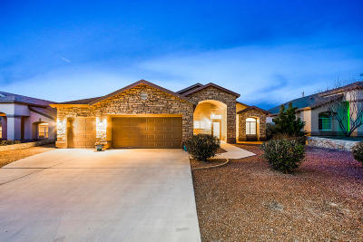 Single Family Home For Sale: 329 Phil Hansen Drive