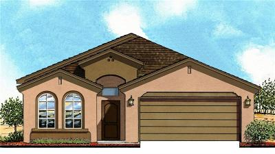 Canutillo Single Family Home For Sale: 7785 Enchanted Ridge