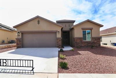 Single Family Home For Sale: 7818 Enchanted Ridge Drive