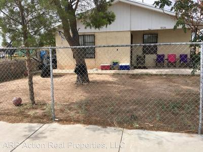 El Paso Single Family Home For Sale: 9228 Delicias Court
