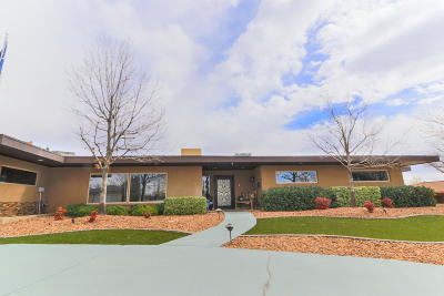 El Paso Single Family Home For Sale: 3916 Flamingo Drive