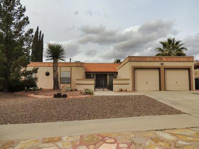 El Paso Single Family Home For Sale: 6517 Camino Fuente Drive