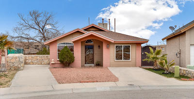 El Paso Single Family Home For Sale: 9141 Sweet Acacia Lane