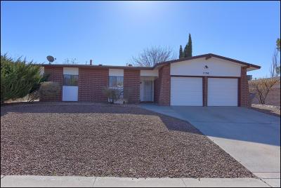 Single Family Home For Sale: 7136 Cerro Negro Drive