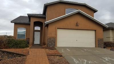 Single Family Home For Sale: 6965 Swede Johnsen Drive
