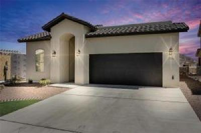 Horizon City Single Family Home For Sale: 12511 Breeder Cup