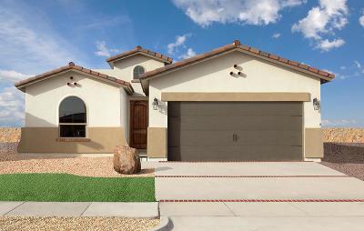 El Paso Single Family Home For Sale: 10044 Hueco Junction Road