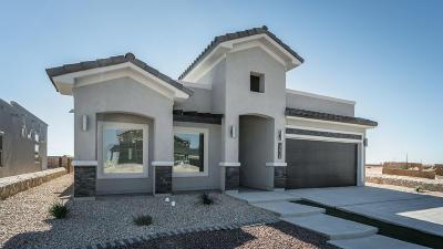 Horizon City Single Family Home For Sale: 13948 Flora Vista Avenue