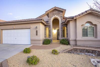El Paso Single Family Home For Sale: 5976 Los Pueblos Drive