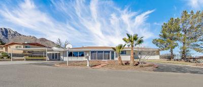 Single Family Home For Sale: 3005 Titanic Avenue
