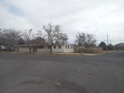 El Paso Single Family Home For Sale: 348 Bird Avenue