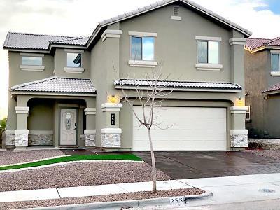 Horizon City Single Family Home For Sale: 255 Covington Ridge Way