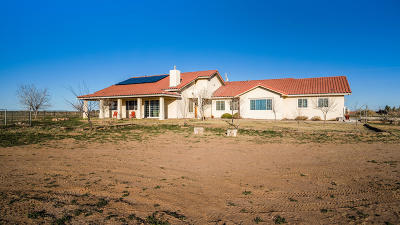 Single Family Home For Sale: 202 Mesilla View Drive