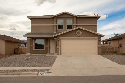 Single Family Home For Sale: 10693 Canyon Sage Drive
