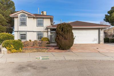 Single Family Home For Sale: 12509 Crystal Ridge Street