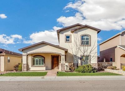 Single Family Home For Sale: 12917 Hueco Mine Drive