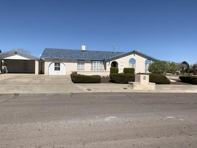 El Paso Single Family Home For Sale: 10473 Aphonia Drive