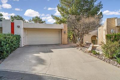 El Paso Condo/Townhouse For Sale: 5704 Mira Grande Drive