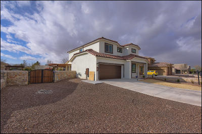 El Paso Single Family Home For Sale: 524 Valley Plum Avenue