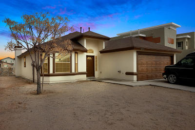 Horizon City Single Family Home For Sale: 14713 Horizon Vista Avenue