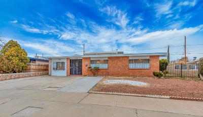 El Paso Single Family Home For Sale: 5109 Kodiak Avenue