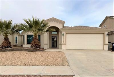 Horizon City Single Family Home For Sale: 305 Sky Vista Place