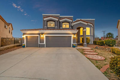Single Family Home For Sale: 12485 Tierra Rey Court
