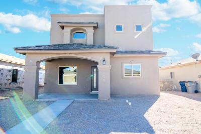 Single Family Home For Sale: 14470 Alyssa Marie